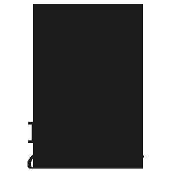 sponsors-doyon-250-250